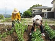今日は、農作業。自分たちで育てた野菜は格別のはず、収穫が楽しみだ!!