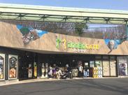 地下鉄から徒歩3分の東山動植物園★ 正面噴水近くのショップでNewメンバー募集! 家族連れやデートで来るお客様も多くて雰囲気◎