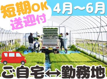 6月初旬までの短期バイト☆ 未経験&学生さん歓迎の農作業スタッフ♪ 土日のみのお仕事もOKです★