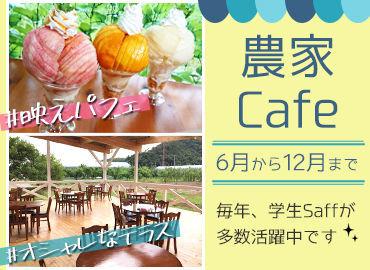 市内外からお客様が多く訪れる農家カフェ! 自社農園のスイーツを扱う直売所に併設☆ 新鮮果物を使ったデザートが自慢です♪