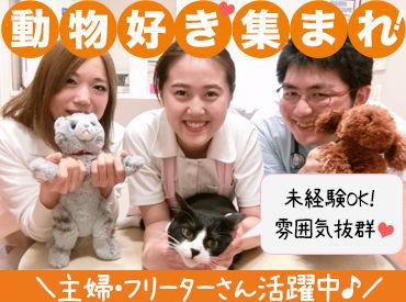 【事務Staff】{動物好き}さん必見♪■動物に関わる仕事がしたい■穏やかな職場で働きたい■安定して働きたい!!>>そんな方歓迎です♪