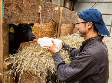月22万円~の高収入を得られます◎ 各種手当や待遇をご用意し、あなたを応援します! 酪農を学びたい方にピッタリ!
