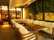 お店の目玉は…なんといってもこの緑溢れるオープンテラス★開放的な空間で美味しい料理とお酒が楽しめます♪