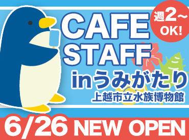 【水族館のCafe Staff】…オープニング募集!…おしゃれなテラスは海風が気持ちいい~お仕事は簡単⇒【未経験】でも安心!<友達誘って応募もOK★>