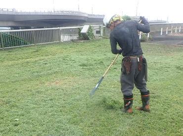 先輩スタッフが刈込した木をキレイに片付けするだけ!カンタンなお仕事だから、未経験の方も安心してご応募を★