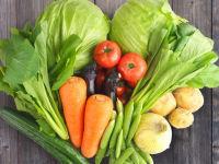 「旬」な野菜たちがたくさんいますヨ!