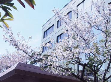 5階建て&3階建ての本社オフィスビルのクリーニング! 歴史のある会社ですが、ビルはキレイなので、お掃除もしやすいんです♪