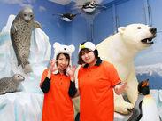 日本全国・世界各国からたくさんのお客様が集まる≪旭山動物園≫★一緒に楽しみながら、お客様の最高の笑顔を引き出そう!