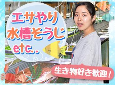 生き物の通信販売をする会社でお仕事♪ 出荷前の魚や植物を管理している倉庫での勤務なので、接客もありません◎