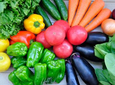 ▼とにかく簡単!! 決められた個数・重さに沿って袋に詰めていく、シンプルな作業です♪ 扱う野菜は季節ごとに異なります◎