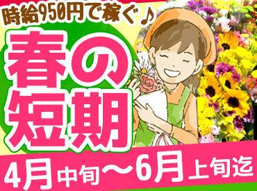 今がチャンス!期間限定★ 春だけの短期バイトをしませんか? 花に水をやったり、苗を出したり未経験でもできるシンプル作業♪