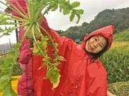 年に数回野外体験を行っています!農業体験では子どもたちが自分で野菜を掘ったりして自然に触れていますよ★