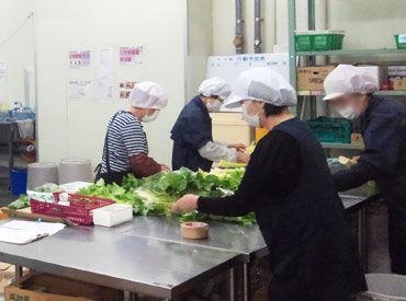 フルーツや野菜の鮮度を保つため 15℃の常温庫内での作業になります! そのため、夏も冬も快適ですよ◎