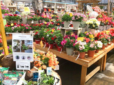 素敵できれいなお花に囲まれて お仕事が出来ちゃいます◎ 好きなことを仕事に出来るってすごく幸せ…♪