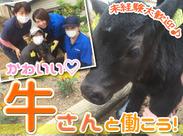 ◆日本最大級規模の農業産業法人◆ <動物が好き><酪農に興味がある> そんな方にピッタリ! 男女問わず活躍している職場です♪