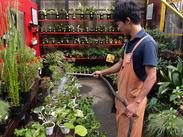 『専門知識はないけど…』⇒大丈夫!植物が好きな方、大歓迎!未経験の方でも安心して始められます♪