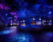 冷凍シーラカンスの展示があるのは世界中でここだけ!! ほかにも、普通の水族館では見られない めずらしい深海魚がたくさん☆
