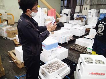 市場での様子はこんな感じ♪ 新鮮な魚介類がたくさん!活気ある市場の雰囲気が好きな方必見です☆