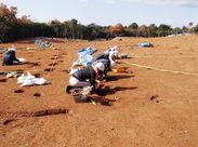 長期で安定して働ける遺跡発掘調査員◎ 歴史/遺跡/冒険好きさん一緒に働きましょう! 年齢問わず大歓迎です!