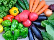 野菜をカットしたり、箱に入れたり、シンプルなお仕事!慣れてくるとパッパッと進められるから、案外楽しいかも!?