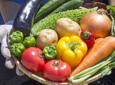 ~新潟の農業を応援!~ 農家さんから直接野菜を届けるお仕事♪ お仕事どんどん拡大中です★