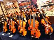 【 嬉しい社割あり…★ 】 欲しかった楽器や、欠かせないメンテナンス用品も、 STAFFなら『20%OFF』。とってもお得♪