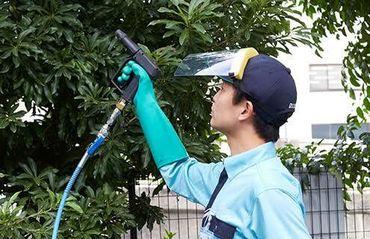 「花に詳しくなりたい」「かっこよさそう」って理由でOK! 最初はお庭のお掃除など、できることからゆっくり始めていきましょう