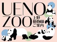 動物園でのお仕事です!人気のパンダ舎などの誘導など…人気者のかわいい動物たちに癒されながらオシゴトできますよ◎