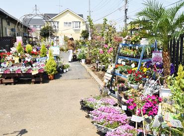新鮮なお野菜やお花、園芸資材♪ 安心・安全なものだけだから、 自信を持って販売できる♪ お客さんは気さくで温かい方ばかり★