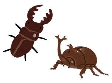 【イベント運営STAFF】\夏にピッタリな昆虫イベント!/運営STAFF10名大量募集☆学生・フリーター・主婦(夫)など大歓迎♪≪ 短期/週1~/週払いOK ≫
