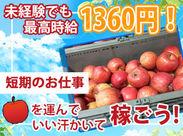 【11月末までのりんごの荷受】りんご箱をトラックから荷降ろしするのがお仕事です!体を動かすアクティブバイトです♪