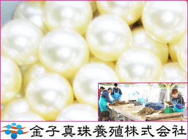 海上屋台での真珠養殖に関するお仕事です♪+。 担当スタッフで分担して作業を行っていただきます◎