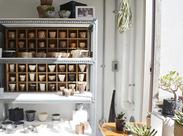 *お部屋を照らす、命ある植物 *職人が魂を込めて作る陶器の鉢 だけでなく、Tシャツや置物/バッグなど幅広く扱っています♪
