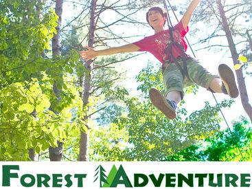 いま話題のアウトドア施設のお仕事☆大自然の森の中で一緒に楽しく働きませんか?『土日・週末だけ』のチャレンジも大歓迎★