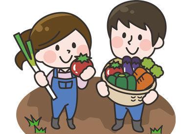 """【収穫STAFF】\\今年の夏は""""かぼちゃ""""しよ?//無料送迎で超ラク通勤!!送迎中のお昼寝O…K…( ˘ω˘ )スヤァ夏休みだけも大歓迎だよ~!"""