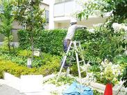"""散らばった葉や枝を片付けるダケの""""カンタン""""なお仕事です♪ 色んな現場を回れるので楽しみながらお仕事できちゃう★"""