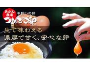 『つまんでご卵』で有名★ とんかつ・からあげ・TKGのお店です♪ 友達にも自慢できちゃうかも(^○^)b