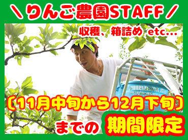 ▽ 大自然の中でのびのびお仕事 ▽ 楽しくお仕事したい方にオススメ!! 収穫の楽しさを体感してください♪