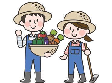 人気の農作業も豊富に紹介可能!! 大自然の中、のびのびと 体を動かしながらお仕事しませんか?