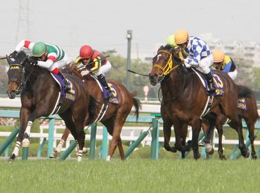 【競馬場STAFF】 \JRAで短期スタッフ募集/≪競馬が好きな方にピッタリ♪≫*みんなで札幌競馬を盛り上げよう*