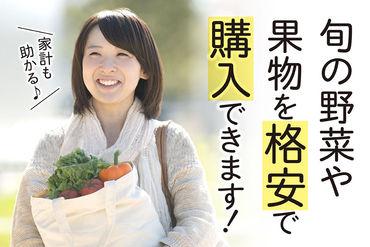 ≪社割でお得に野菜をGET!!≫ 規格外などで出荷できない、 新鮮な野菜をお安くGET♪ 見逃せない特典です◎
