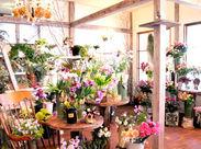スタッフが厳選した季節の色とりどりのお花に囲まれて働けます♪