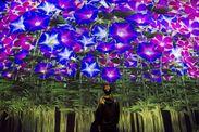 NEW STAFF大大募集★★ 世界に類を見ない全く新しい世界!あなたも体験してみませんか?( *´艸`)