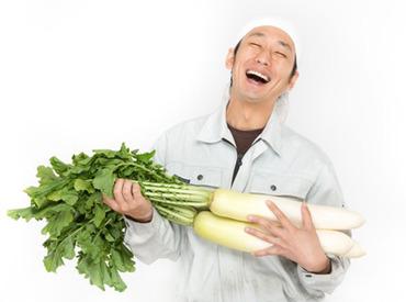 【野菜の検品】履歴書ナシでまずは登録◎【週2日~】【短期】土日だけ・平日だけなどシフトも柔軟♪友達同士での応募も大・大・大歓迎!