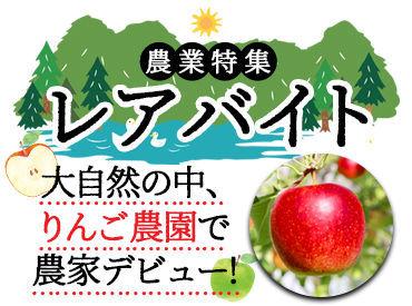 \レアな農業体験を/ 農家さんの元で、イチから教えてもらいながら、 おいしい青森りんごを育てませんか?