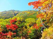 大型の保養所でのお仕事です!秋は紅葉もキレイで癒されます! 20~50代まで幅広く活躍中です★