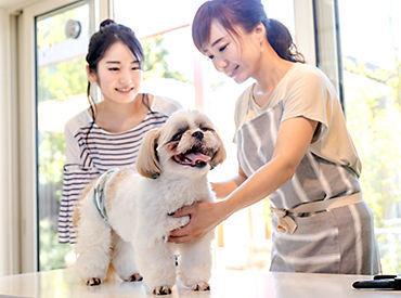 ペット・ペット用品の販売はもちろん、 餌やりやお散歩、お掃除など 動物たちのケアも対応! 可愛らしいしぐさに癒されます☆