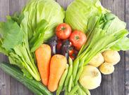 スーパーでおなじみ!野菜や果物のパック詰めをお任せします♪重たくないし、扱いもカンタンだし…とっても初心者向け★