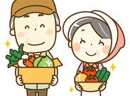 6月は大根収穫のシーズン♪ 野菜収穫や出荷作業をお任せします☆未経験の方も歓迎します!!