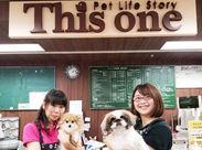 犬・猫好き必見!スタッフ同士とっても仲良し♪動物好きな仲間と一緒にお店を盛り上げましょう☆まずはお気軽にご応募ください!